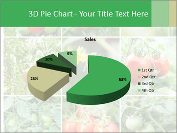 Vegetables Cultivation PowerPoint Template - Slide 35