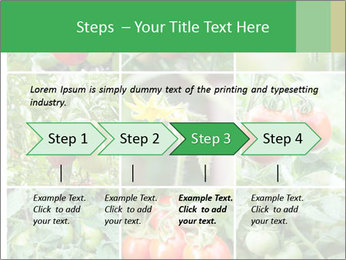 Vegetables Cultivation PowerPoint Template - Slide 4