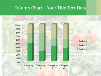 Vegetables Cultivation PowerPoint Template - Slide 50