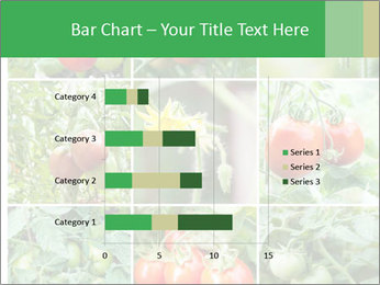 Vegetables Cultivation PowerPoint Template - Slide 52
