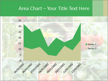 Vegetables Cultivation PowerPoint Template - Slide 53