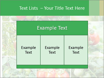 Vegetables Cultivation PowerPoint Template - Slide 59