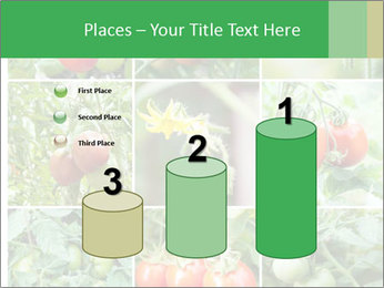 Vegetables Cultivation PowerPoint Template - Slide 65