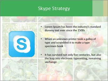 Vegetables Cultivation PowerPoint Template - Slide 8