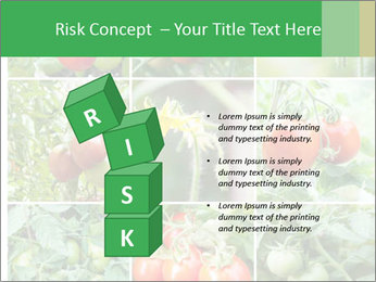 Vegetables Cultivation PowerPoint Template - Slide 81