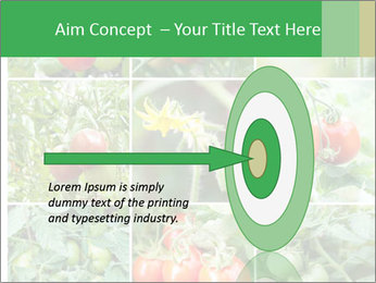Vegetables Cultivation PowerPoint Template - Slide 83
