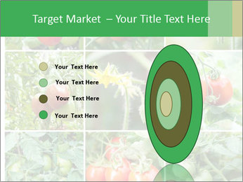 Vegetables Cultivation PowerPoint Template - Slide 84