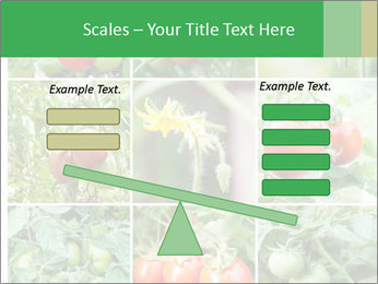 Vegetables Cultivation PowerPoint Template - Slide 89