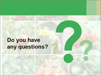 Vegetables Cultivation PowerPoint Template - Slide 96