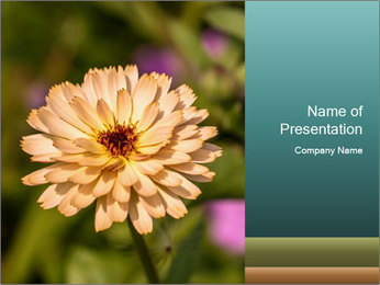 Yellow Flower In Blossom PowerPoint Templates - Slide 1