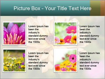 Yellow Flower In Blossom PowerPoint Templates - Slide 14