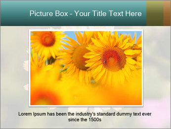 Yellow Flower In Blossom PowerPoint Templates - Slide 16