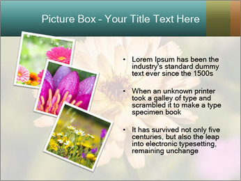 Yellow Flower In Blossom PowerPoint Templates - Slide 17