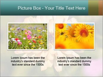 Yellow Flower In Blossom PowerPoint Templates - Slide 18