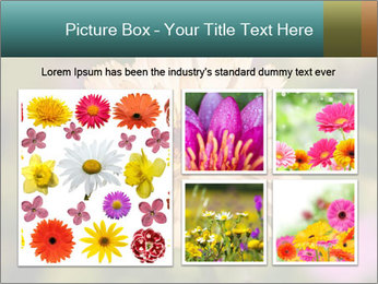 Yellow Flower In Blossom PowerPoint Templates - Slide 19