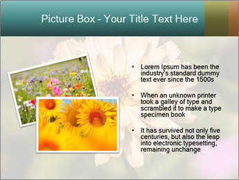 Yellow Flower In Blossom PowerPoint Templates - Slide 20