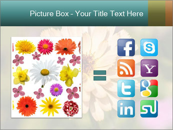 Yellow Flower In Blossom PowerPoint Templates - Slide 21