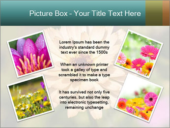 Yellow Flower In Blossom PowerPoint Templates - Slide 24
