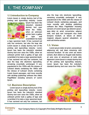 0000089447 Word Template - Page 3