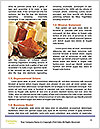 0000089450 Word Templates - Page 4