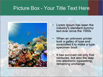 Professional Diver PowerPoint Template - Slide 13