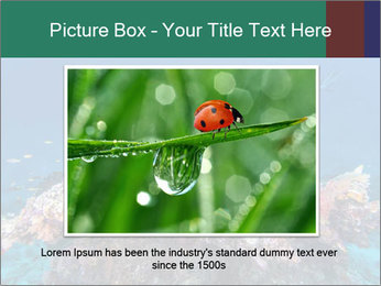 Professional Diver PowerPoint Template - Slide 16