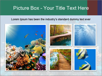 Professional Diver PowerPoint Template - Slide 19