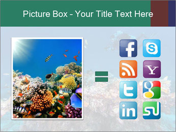 Professional Diver PowerPoint Template - Slide 21