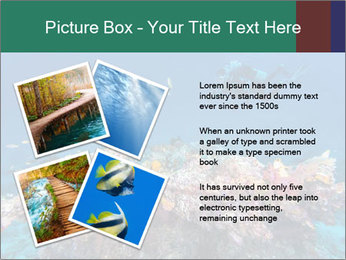 Professional Diver PowerPoint Template - Slide 23
