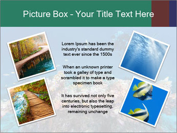 Professional Diver PowerPoint Template - Slide 24