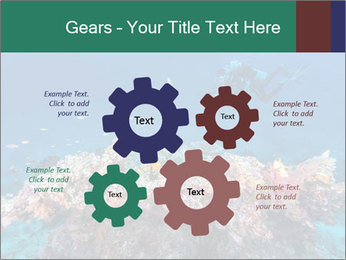 Professional Diver PowerPoint Template - Slide 47