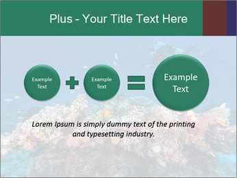 Professional Diver PowerPoint Templates - Slide 75