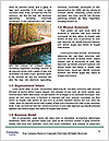 0000089451 Word Templates - Page 4