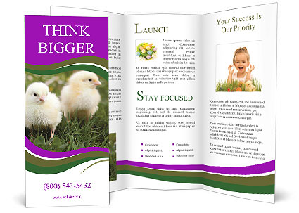 0000089452 Brochure Templates