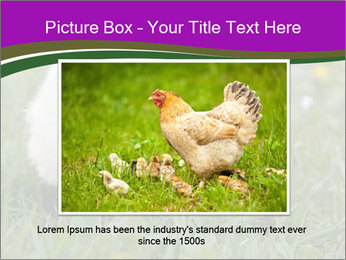 Two Cute Chickens PowerPoint Template - Slide 16