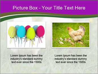 Two Cute Chickens PowerPoint Template - Slide 18