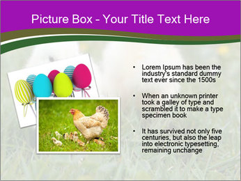 Two Cute Chickens PowerPoint Template - Slide 20