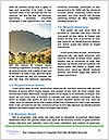 0000089453 Word Template - Page 4