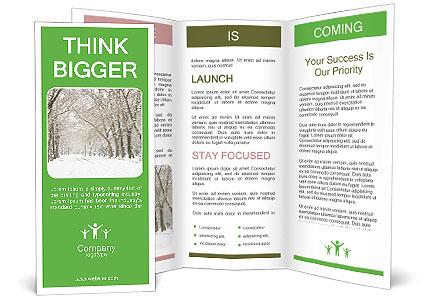 0000089454 Brochure Template
