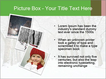 Winter Park PowerPoint Templates - Slide 17