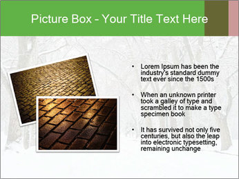 Winter Park PowerPoint Templates - Slide 20