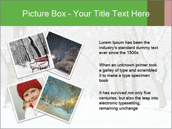 Winter Park PowerPoint Templates - Slide 23