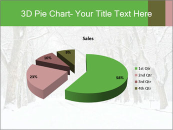 Winter Park PowerPoint Templates - Slide 35