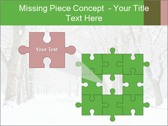 Winter Park PowerPoint Templates - Slide 45