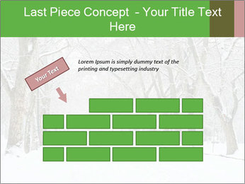 Winter Park PowerPoint Templates - Slide 46