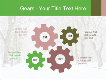 Winter Park PowerPoint Templates - Slide 47