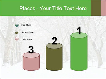 Winter Park PowerPoint Templates - Slide 65