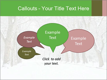 Winter Park PowerPoint Templates - Slide 73