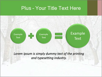 Winter Park PowerPoint Templates - Slide 75