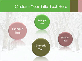 Winter Park PowerPoint Templates - Slide 77